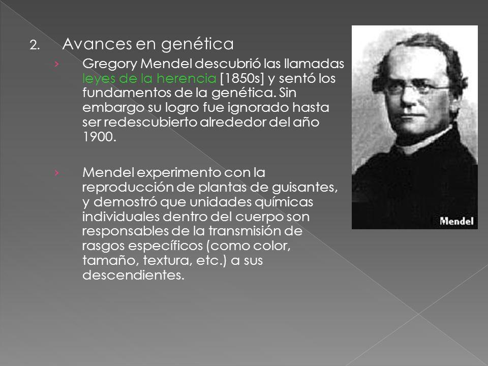 2. Avances en genética Gregory Mendel descubrió las llamadas leyes de la herencia [1850s] y sentó los fundamentos de la genética. Sin embargo su logro