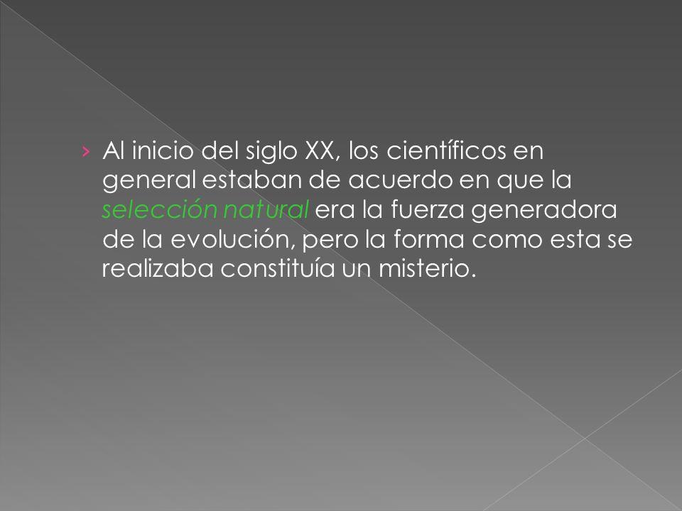 Al inicio del siglo XX, los científicos en general estaban de acuerdo en que la selección natural era la fuerza generadora de la evolución, pero la fo
