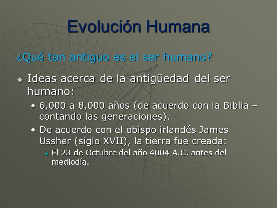 Evolución Humana ¿Qué tan antiguo es el ser humano? Ideas acerca de la antigüedad del ser humano: Ideas acerca de la antigüedad del ser humano: 6,000