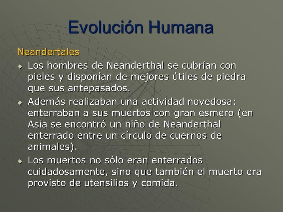 Neandertales Los hombres de Neanderthal se cubrían con pieles y disponían de mejores útiles de piedra que sus antepasados. Los hombres de Neanderthal