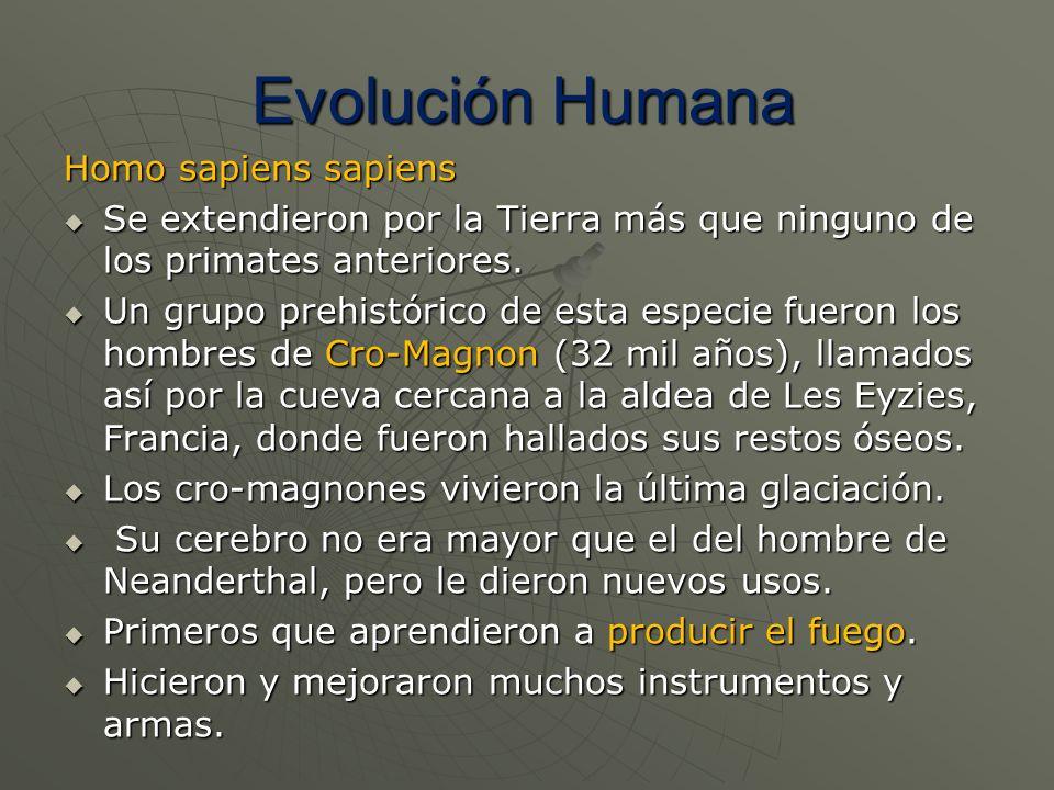 Homo sapiens sapiens Se extendieron por la Tierra más que ninguno de los primates anteriores. Se extendieron por la Tierra más que ninguno de los prim