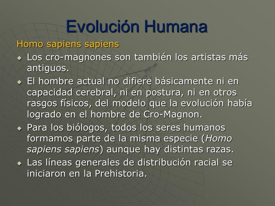 Homo sapiens sapiens Los cro-magnones son también los artistas más antiguos. Los cro-magnones son también los artistas más antiguos. El hombre actual