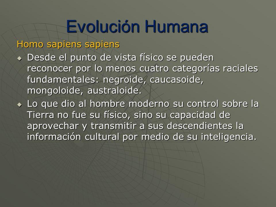 Homo sapiens sapiens Desde el punto de vista físico se pueden reconocer por lo menos cuatro categorías raciales fundamentales: negroide, caucasoide, m