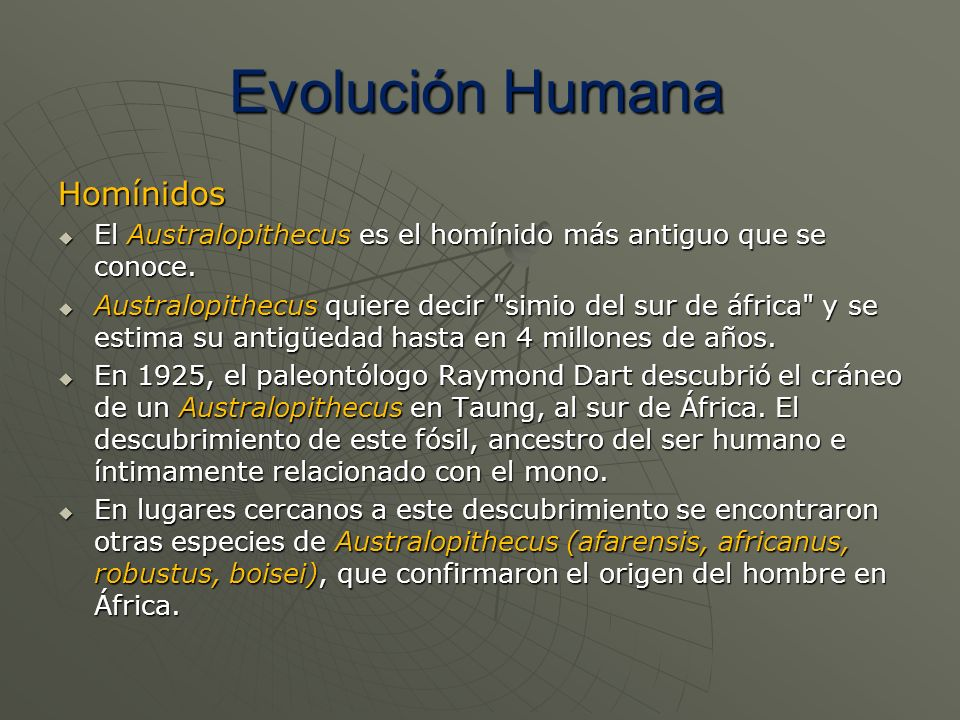 Homínidos El Australopithecus es el homínido más antiguo que se conoce. El Australopithecus es el homínido más antiguo que se conoce. Australopithecus