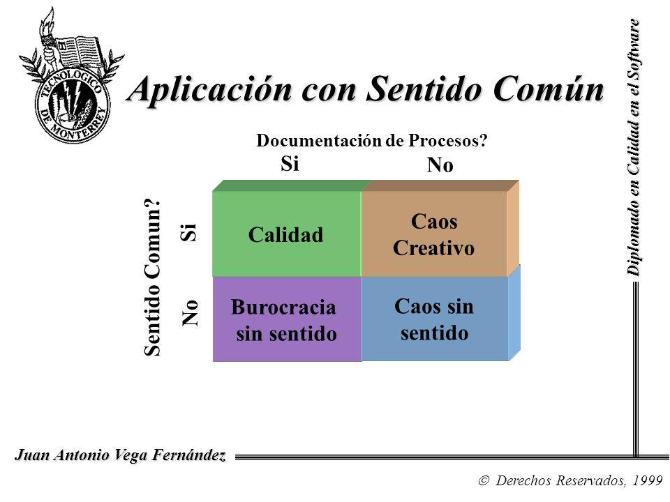 Diplomado en Calidad en el Software Derechos Reservados, 1999 Juan Antonio Vega Fernández Aplicación con Sentido Común Burocracia sin sentido Caos sin sentido Calidad Caos Creativo Documentación de Procesos.