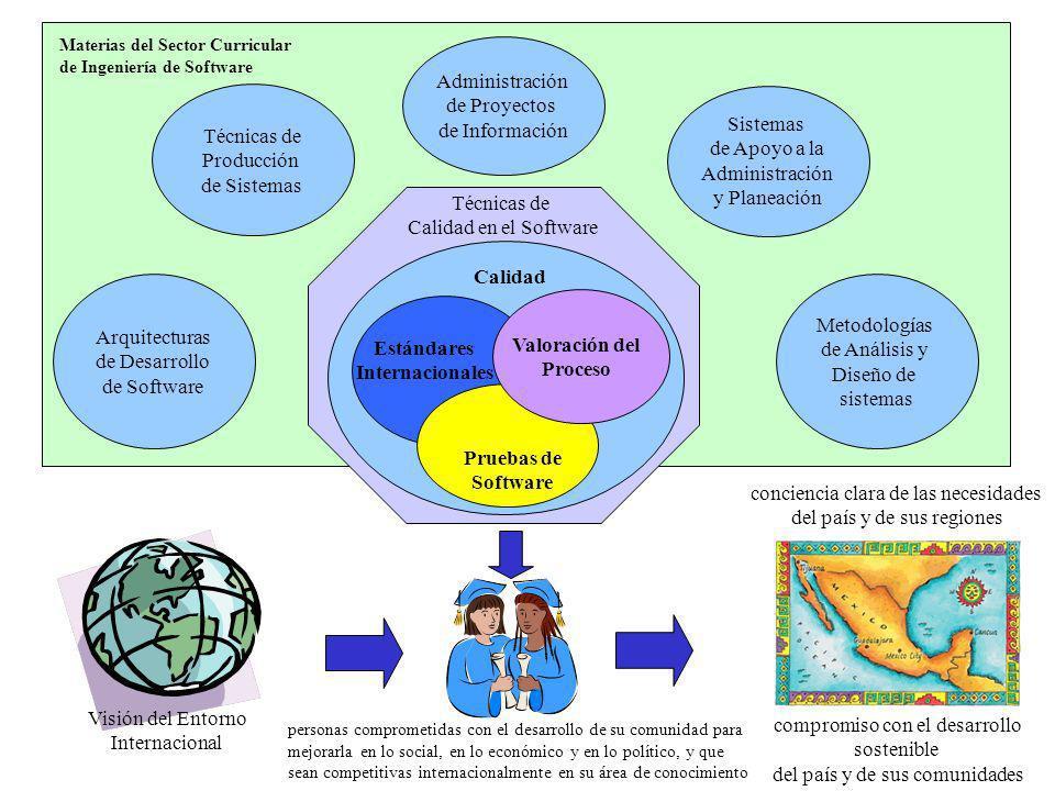 Calidad Estándares Internacionales Valoración del Proceso Pruebas de Software Visión del Entorno Internacional compromiso con el desarrollo sostenible