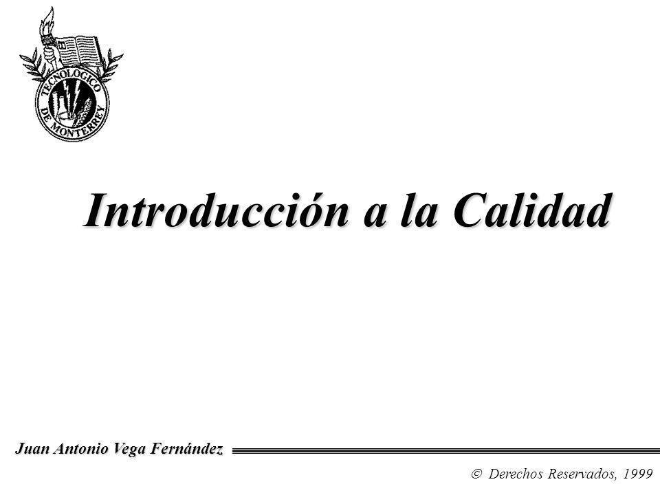Diplomado en Calidad en el Software Derechos Reservados, 1999 Juan Antonio Vega Fernández Definiciones de Calidad Filosofías de Calidad Los Problemas de la Calidad en el Software Introducción a la Calidad