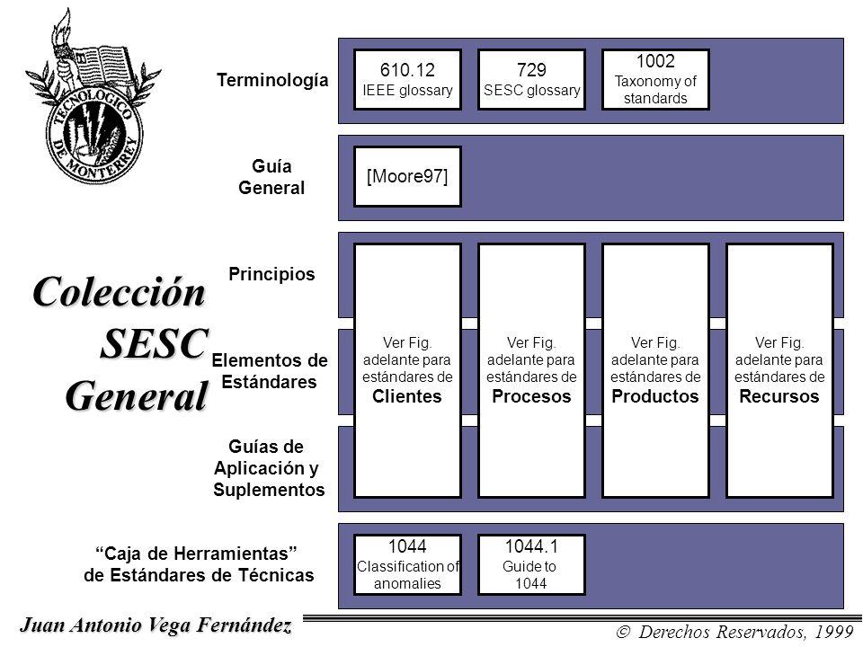 Colección SESC General Terminología Guía General Principios Elementos de Estándares Guías de Aplicación y Suplementos Caja de Herramientas de Estándar