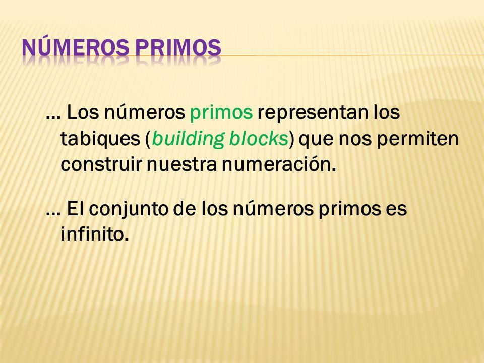 … Los números primos representan los tabiques (building blocks) que nos permiten construir nuestra numeración. … El conjunto de los números primos es