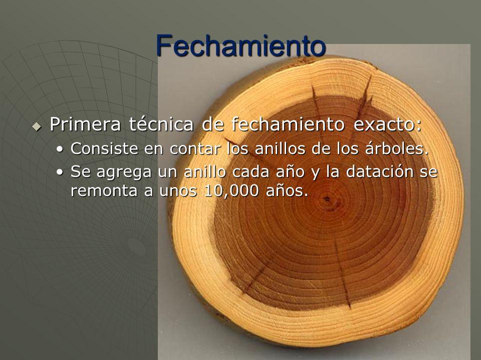 Primera técnica de fechamiento exacto: Primera técnica de fechamiento exacto: Consiste en contar los anillos de los árboles.Consiste en contar los ani