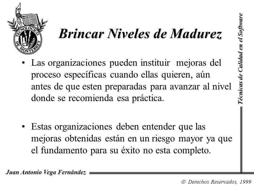 Técnicas de Calidad en el Software Derechos Reservados, 1999 Juan Antonio Vega Fernández Las organizaciones pueden instituir mejoras del proceso espec