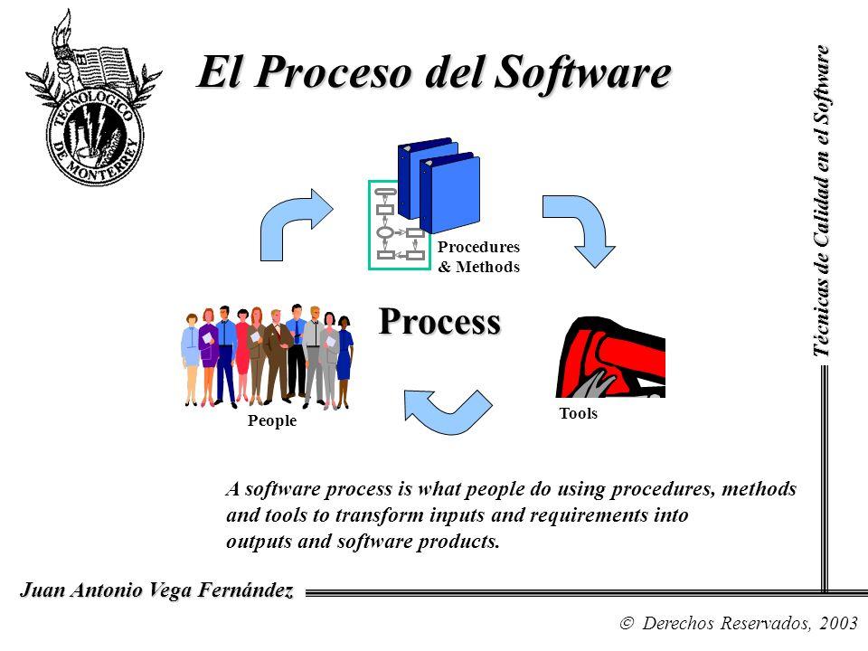 Técnicas de Calidad en el Software Derechos Reservados, 1999 Juan Antonio Vega Fernández El CMM –se basa en prácticas reales –refleja lo mejor del estado de la práctica –refleja las necesidades de los individuos que realizan mejoras del proceso de software, y evaluaciones del proceso de software.