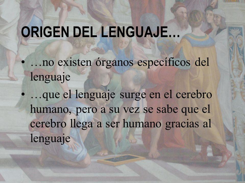 ORIGEN DEL LENGUAJE… …no existen órganos específicos del lenguaje …que el lenguaje surge en el cerebro humano, pero a su vez se sabe que el cerebro ll