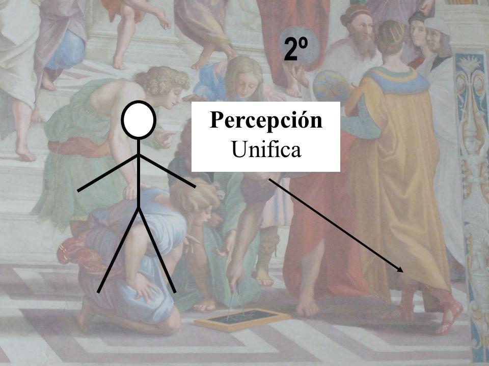 2º Percepción Unifica