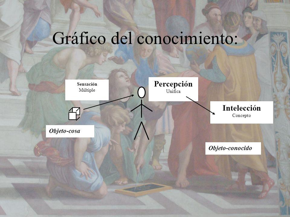 Gráfico del conocimiento: Objeto-cosa Objeto-conocido Percepción Unifica Sensación Múltiple Intelección Concepto