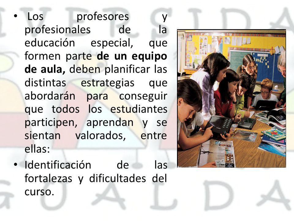 Los profesores y profesionales de la educación especial, que formen parte de un equipo de aula, deben planificar las distintas estrategias que abordar