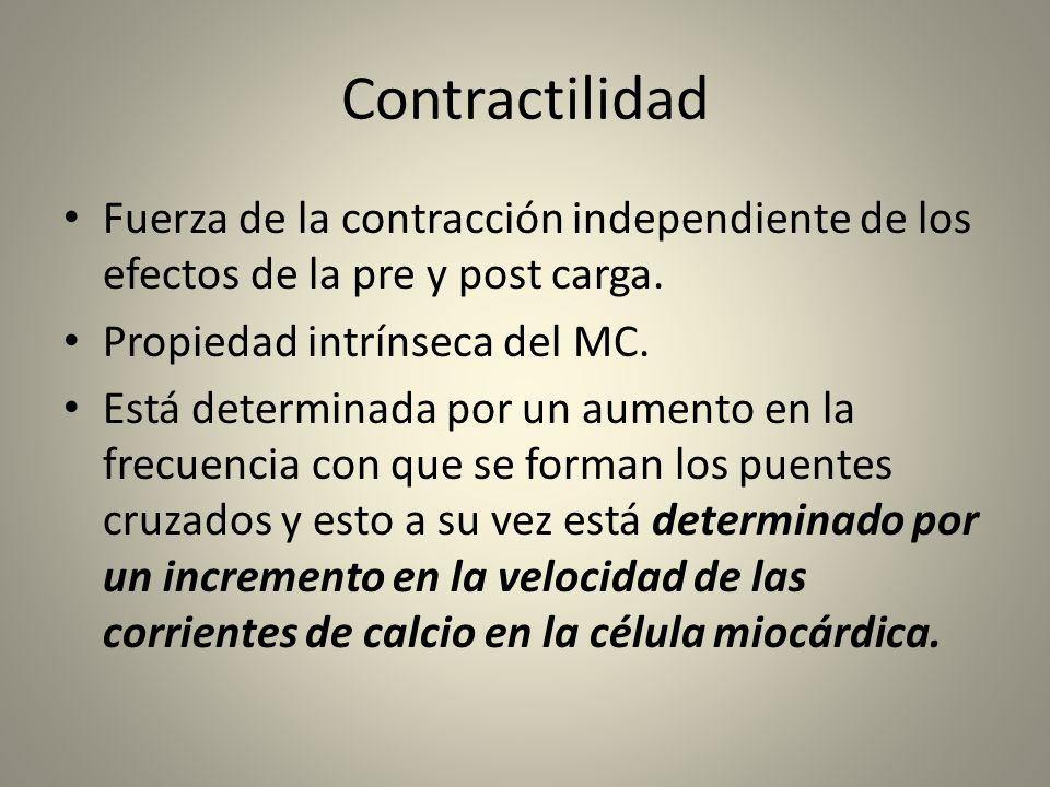 Contractilidad Fuerza de la contracción independiente de los efectos de la pre y post carga. Propiedad intrínseca del MC. Está determinada por un aume