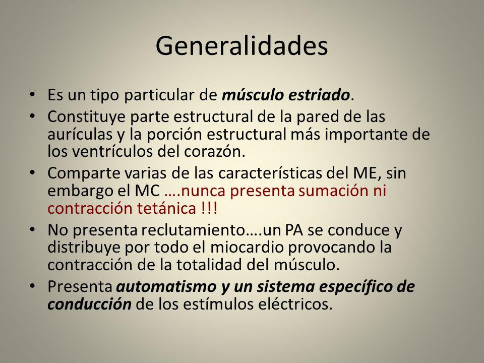 Generalidades Es un tipo particular de músculo estriado. Constituye parte estructural de la pared de las aurículas y la porción estructural más import