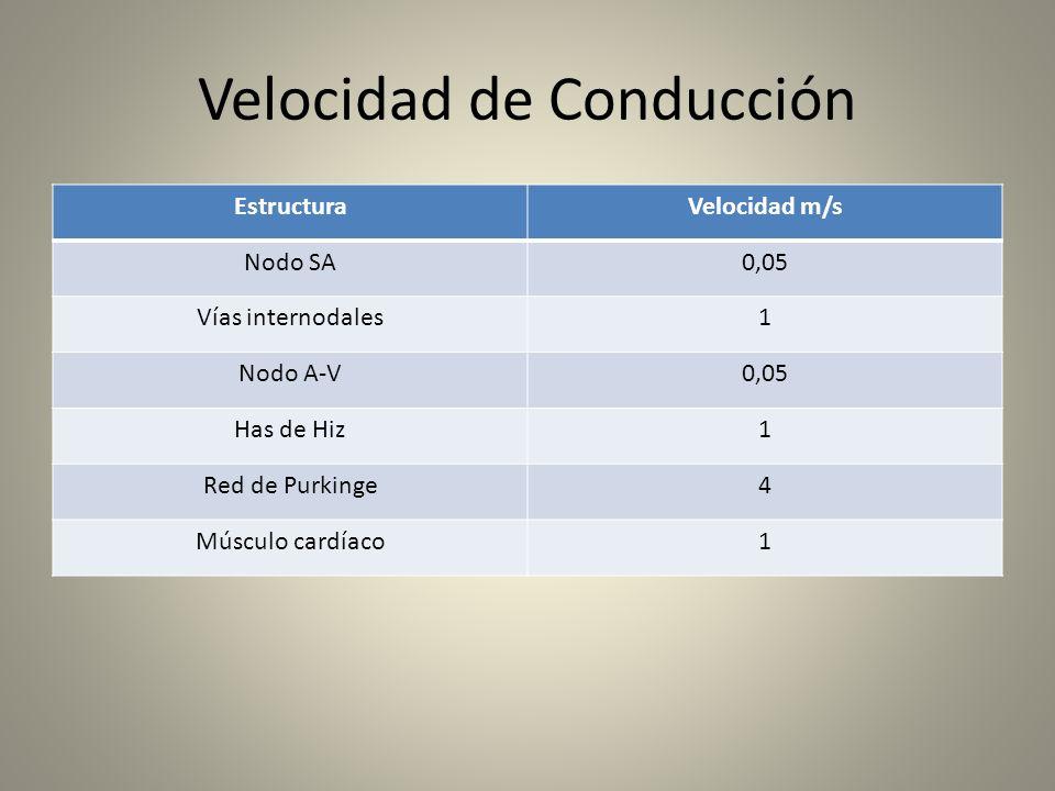 Velocidad de Conducción EstructuraVelocidad m/s Nodo SA0,05 Vías internodales1 Nodo A-V0,05 Has de Hiz1 Red de Purkinge4 Músculo cardíaco1