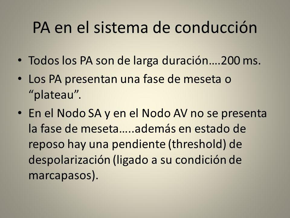 PA en el sistema de conducción Todos los PA son de larga duración….200 ms. Los PA presentan una fase de meseta o plateau. En el Nodo SA y en el Nodo A