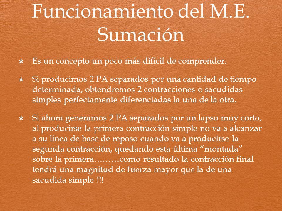 Funcionamiento del M.E. Sumación Es un concepto un poco más difícil de comprender. Si producimos 2 PA separados por una cantidad de tiempo determinada