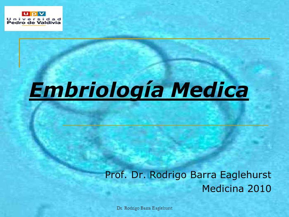Dr. Rodrigo Barra Eaglehurst Embriología Medica Prof. Dr. Rodrigo Barra Eaglehurst Medicina 2010