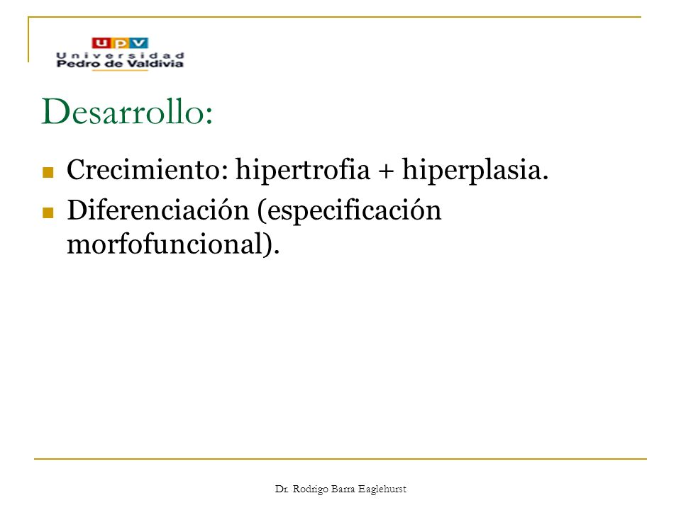 Dr. Rodrigo Barra Eaglehurst Desarrollo: Crecimiento: hipertrofia + hiperplasia. Diferenciación (especificación morfofuncional).