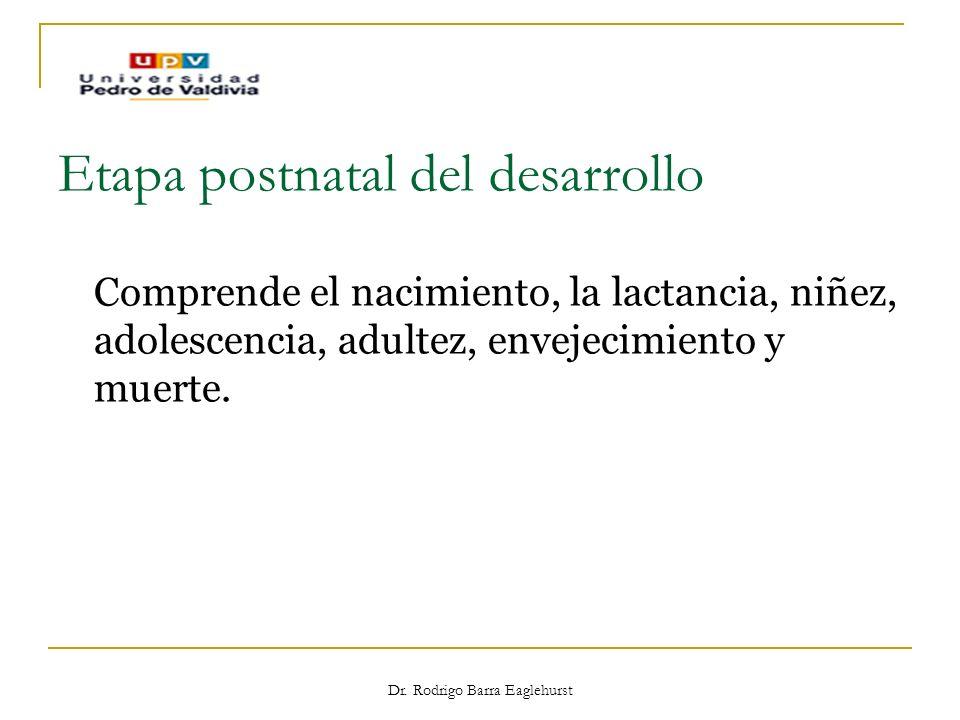 Dr. Rodrigo Barra Eaglehurst Etapa postnatal del desarrollo Comprende el nacimiento, la lactancia, niñez, adolescencia, adultez, envejecimiento y muer
