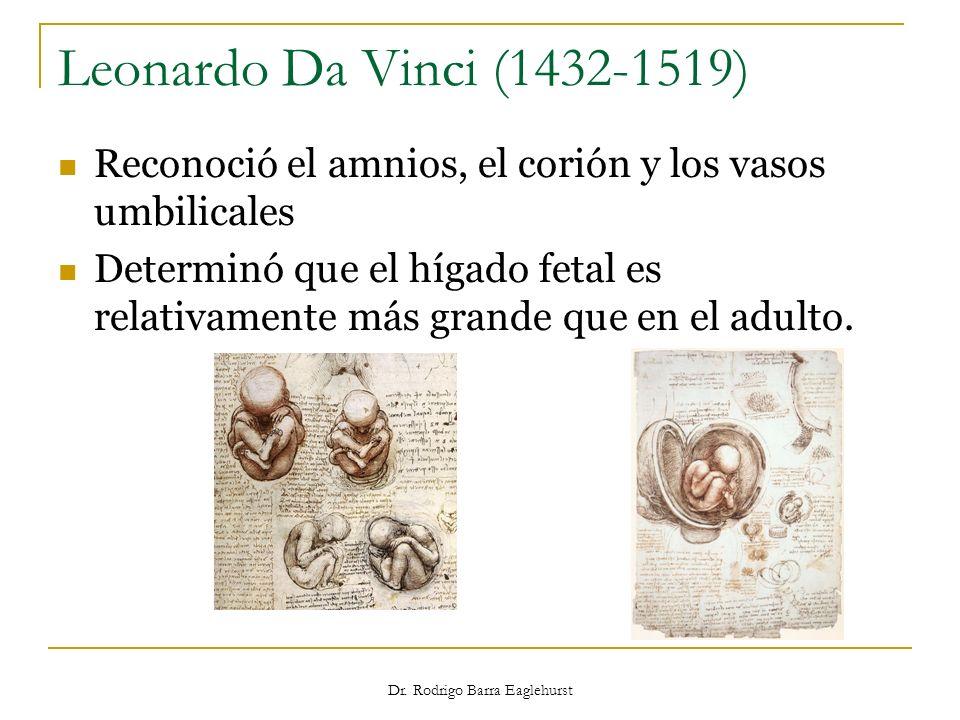 Dr. Rodrigo Barra Eaglehurst Leonardo Da Vinci (1432-1519) Reconoció el amnios, el corión y los vasos umbilicales Determinó que el hígado fetal es rel