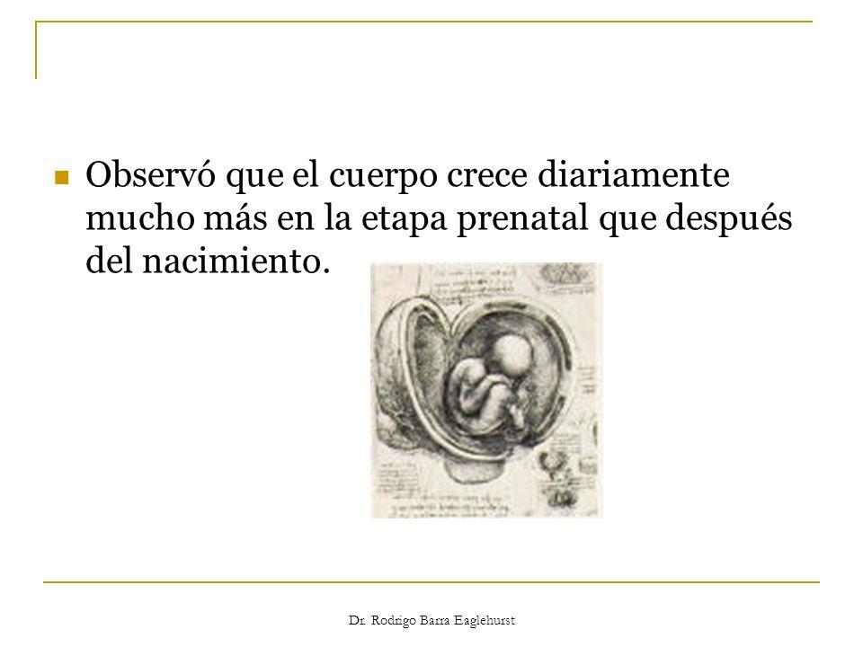 Dr. Rodrigo Barra Eaglehurst Observó que el cuerpo crece diariamente mucho más en la etapa prenatal que después del nacimiento.