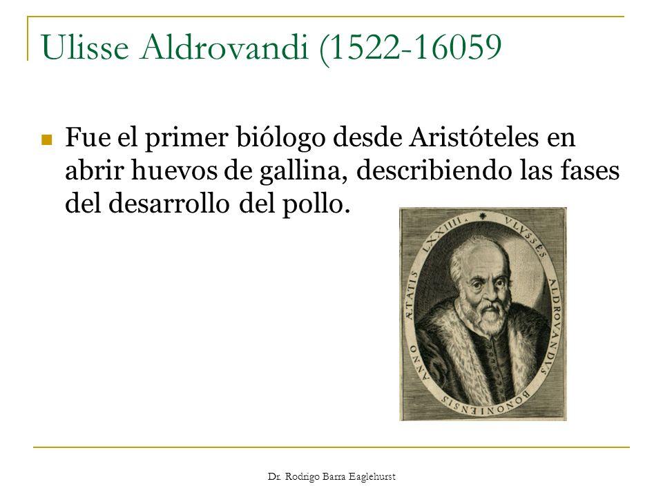 Dr. Rodrigo Barra Eaglehurst Ulisse Aldrovandi (1522-16059 Fue el primer biólogo desde Aristóteles en abrir huevos de gallina, describiendo las fases