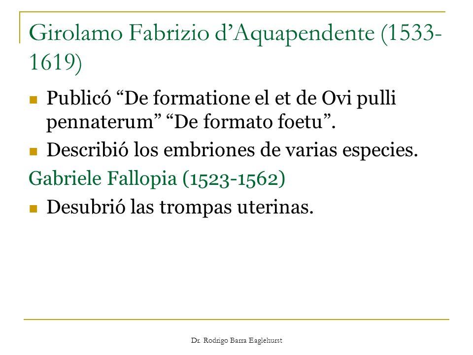Dr. Rodrigo Barra Eaglehurst Girolamo Fabrizio dAquapendente (1533- 1619) Publicó De formatione el et de Ovi pulli pennaterum De formato foetu. Descri
