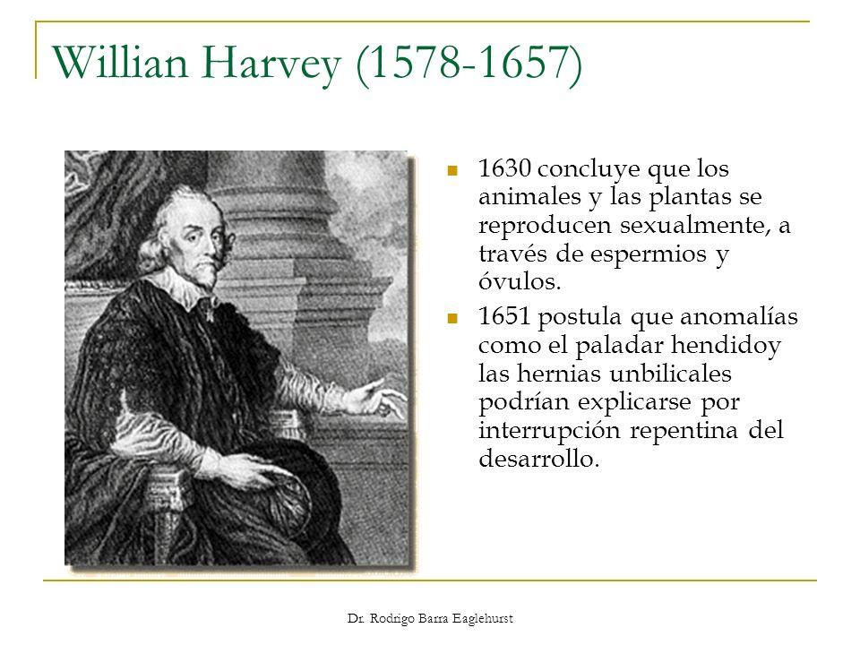 Willian Harvey (1578-1657) 1630 concluye que los animales y las plantas se reproducen sexualmente, a través de espermios y óvulos. 1651 postula que an