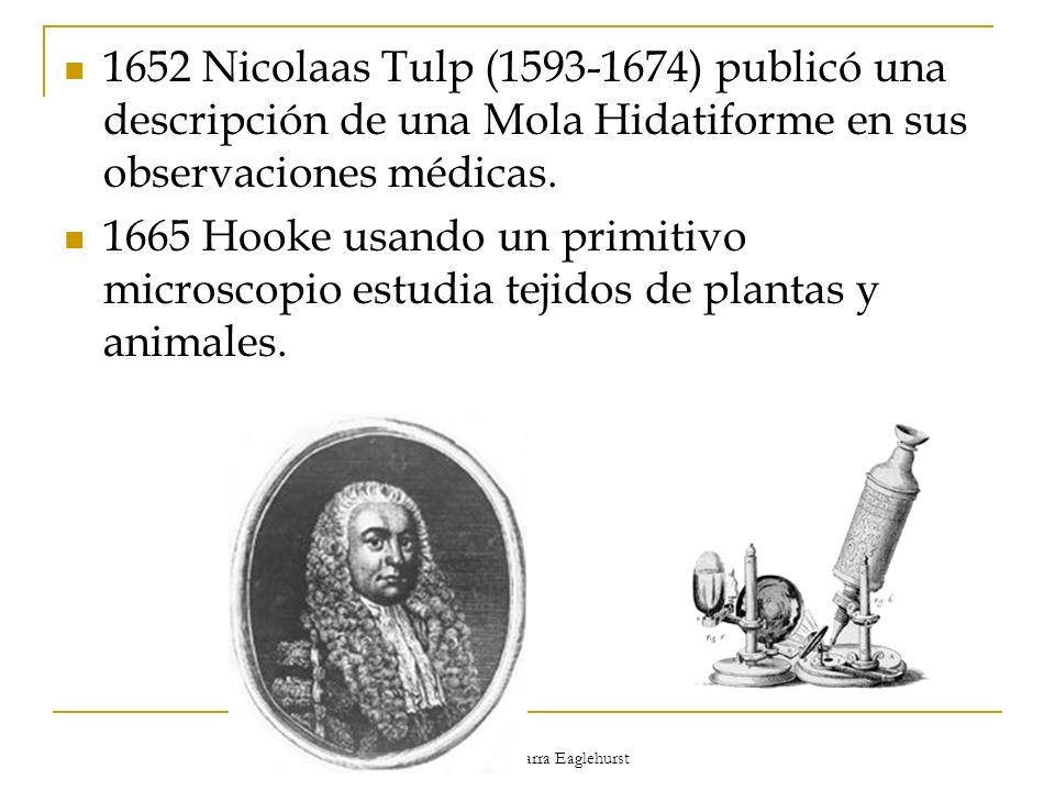 Dr. Rodrigo Barra Eaglehurst 1652 Nicolaas Tulp (1593-1674) publicó una descripción de una Mola Hidatiforme en sus observaciones médicas. 1665 Hooke u