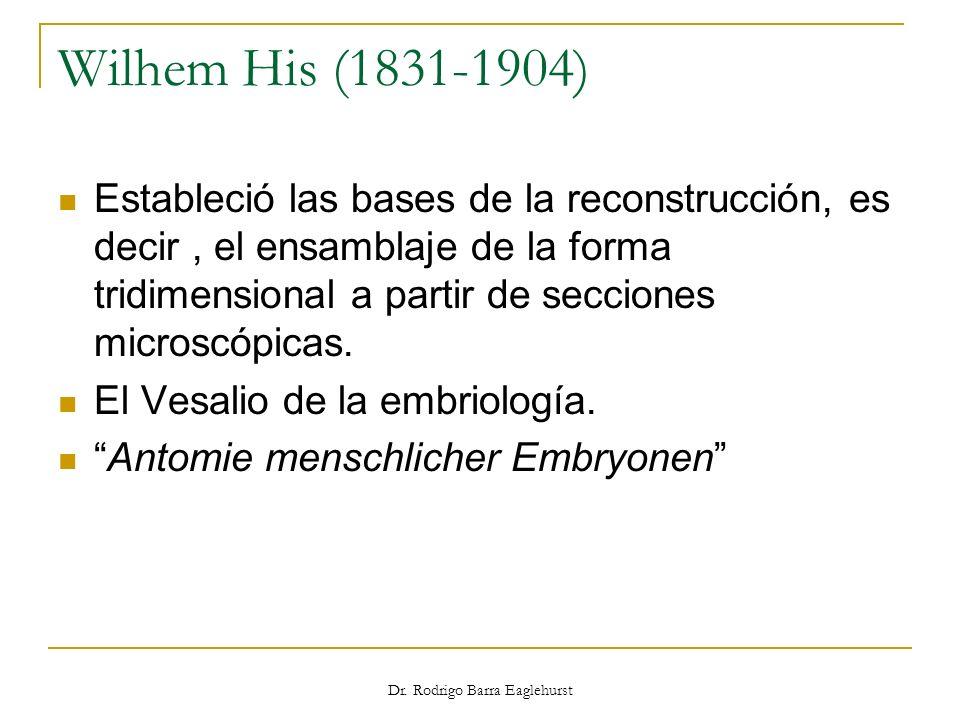Wilhem His (1831-1904) Estableció las bases de la reconstrucción, es decir, el ensamblaje de la forma tridimensional a partir de secciones microscópic