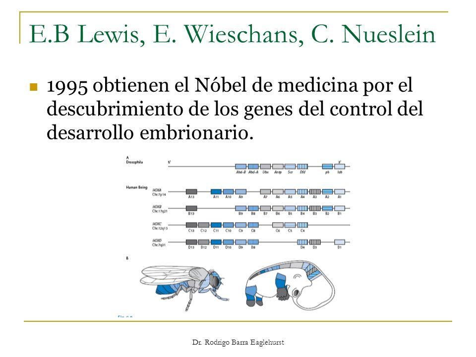 Dr. Rodrigo Barra Eaglehurst E.B Lewis, E. Wieschans, C. Nueslein 1995 obtienen el Nóbel de medicina por el descubrimiento de los genes del control de