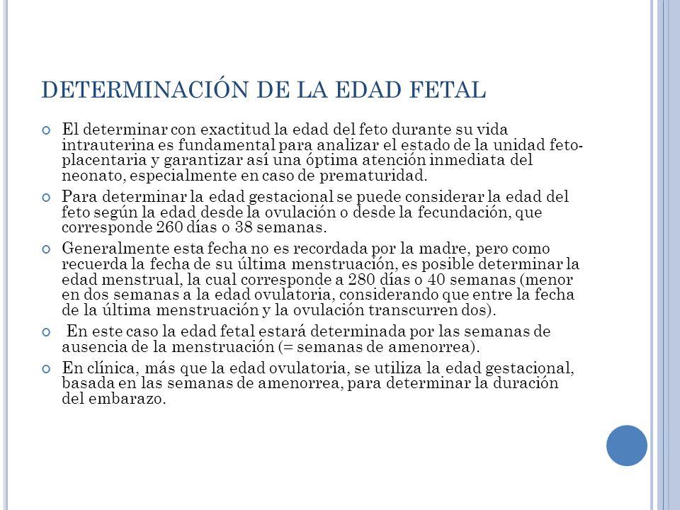 DETERMINACIÓN DE LA EDAD FETAL El determinar con exactitud la edad del feto durante su vida intrauterina es fundamental para analizar el estado de la