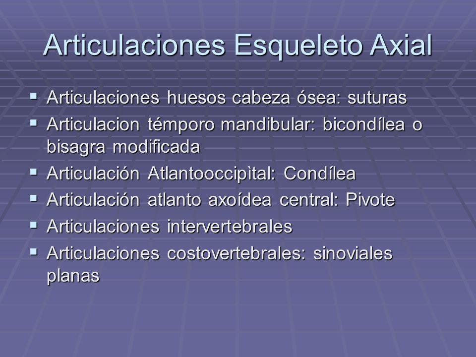 Articulaciones Esqueleto Axial Articulaciones huesos cabeza ósea: suturas Articulaciones huesos cabeza ósea: suturas Articulacion témporo mandibular: