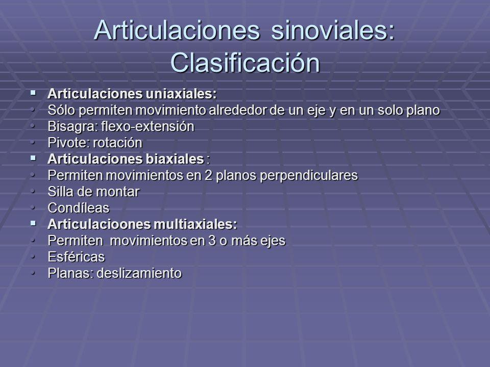 Articulaciones sinoviales: Clasificación Articulaciones uniaxiales: Articulaciones uniaxiales: Sólo permiten movimiento alrededor de un eje y en un so