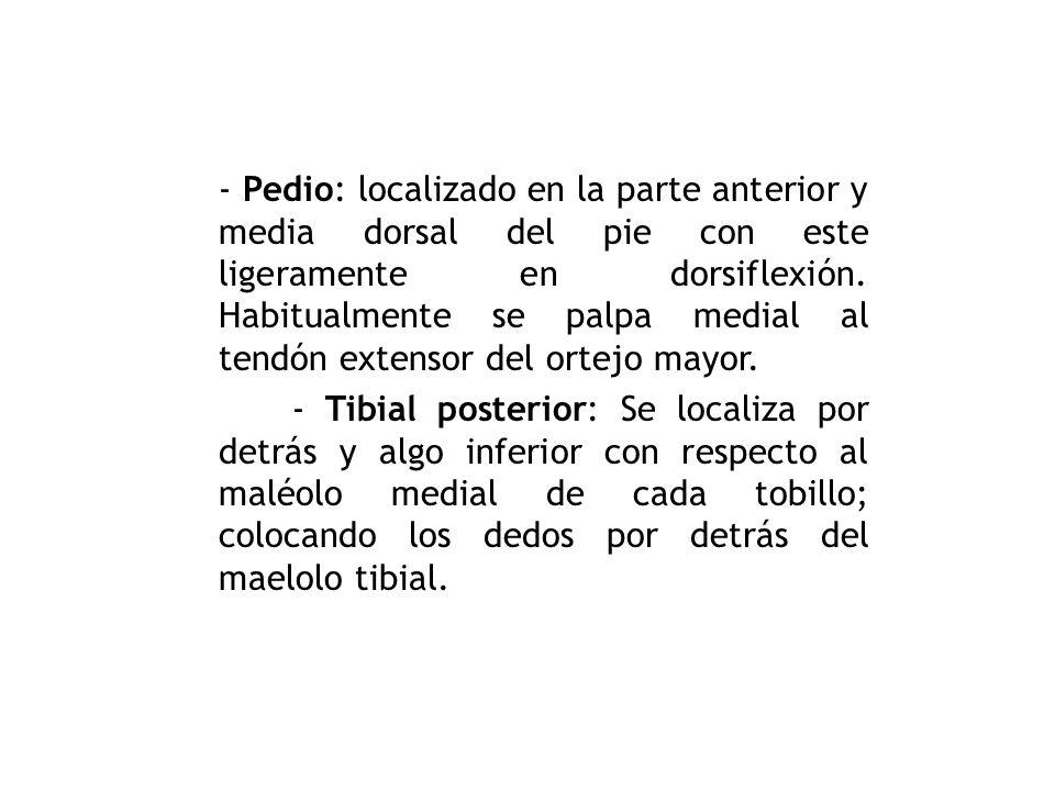 - Poplíteo: localizado den el hueco poplíteo con la pierna en semiflexión. Se palpa estando el paciente en decubito dorsal y con la rodilla ligerament