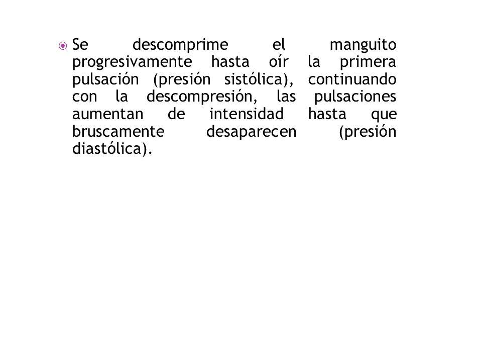 b)Auscultatorio: Este método es el más usual; se procede como el método palpatorio, sólo que en éste se sustituye la palpación por la auscultación con