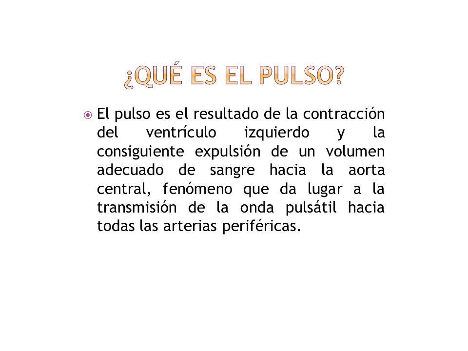 ¿Qué es el pulso? ¿Cómo se toma el pulso? Caracteristicas del pulso Tipos de pulso Valores normales Imágenes Hoja Frontal