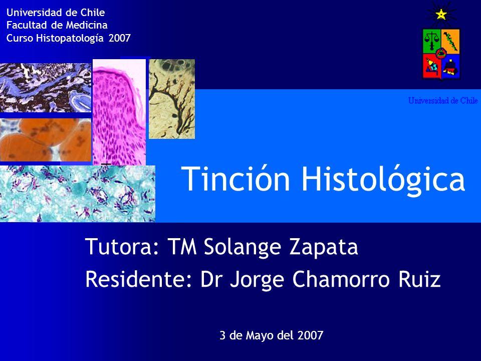 Tinción Histológica Tutora: TM Solange Zapata Residente: Dr Jorge Chamorro Ruiz 3 de Mayo del 2007 Universidad de Chile Facultad de Medicina Curso His