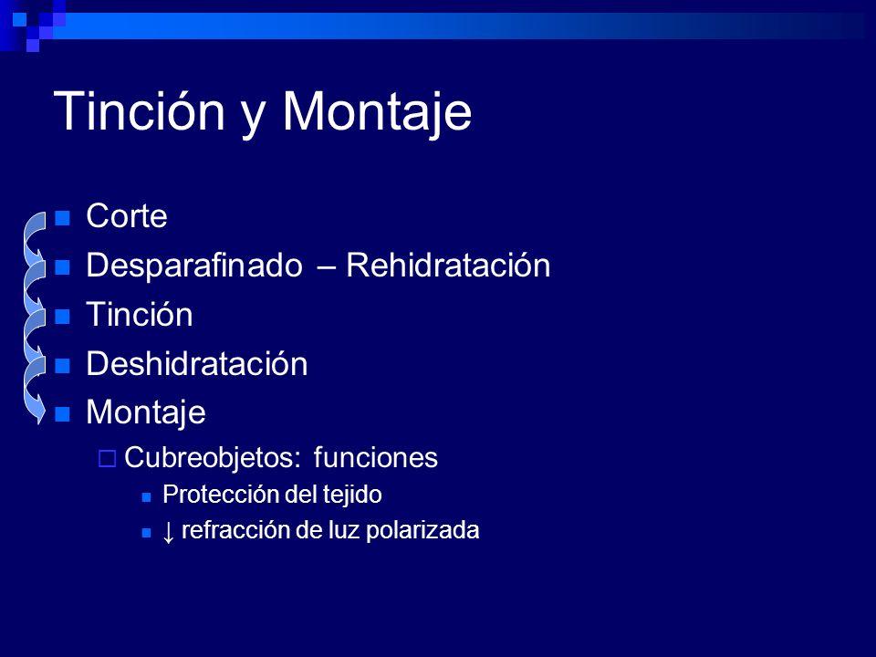 Plata Metenamina Principales Usos: Hongos y Cuerpos de Donovan Tiñe: Paredes micóticas Negros.
