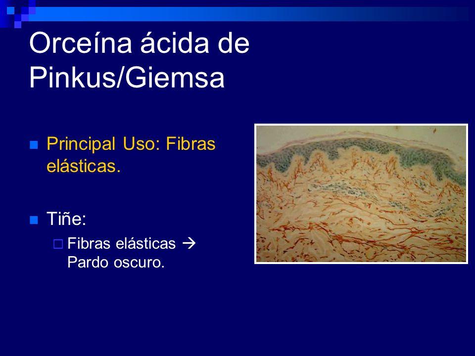 Orceína ácida de Pinkus/Giemsa Principal Uso: Fibras elásticas. Tiñe: Fibras elásticas Pardo oscuro.