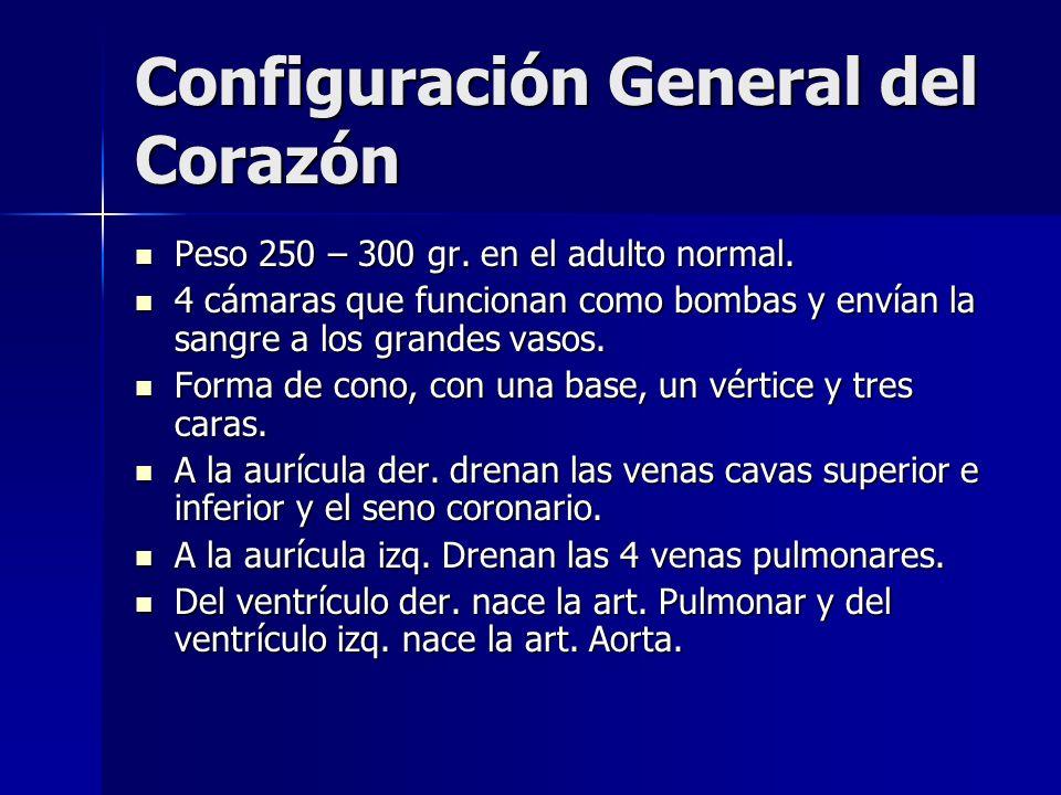 Configuración General del Corazón Peso 250 – 300 gr. en el adulto normal. Peso 250 – 300 gr. en el adulto normal. 4 cámaras que funcionan como bombas