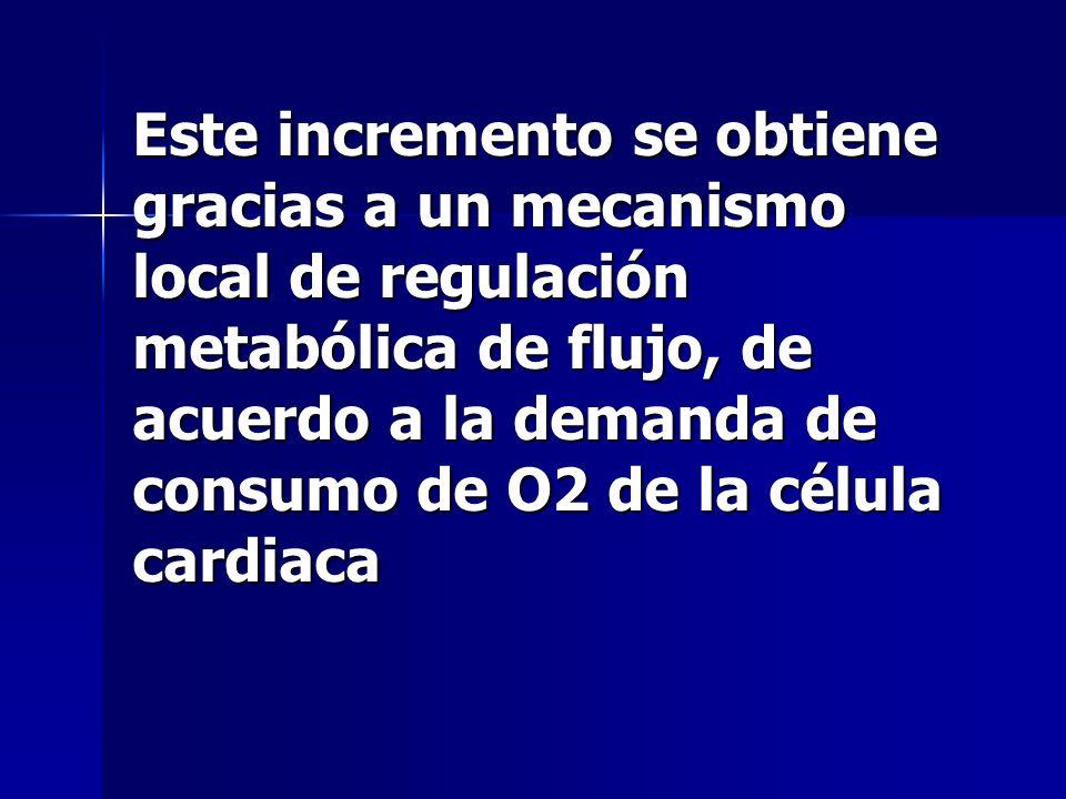 Este incremento se obtiene gracias a un mecanismo local de regulación metabólica de flujo, de acuerdo a la demanda de consumo de O2 de la célula cardi