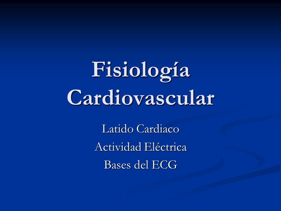 Fisiología Cardiovascular Latido Cardiaco Actividad Eléctrica Bases del ECG