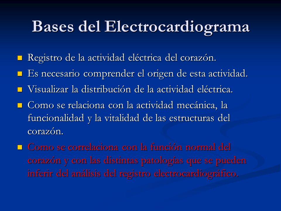 Bases del Electrocardiograma Registro de la actividad eléctrica del corazón. Registro de la actividad eléctrica del corazón. Es necesario comprender e