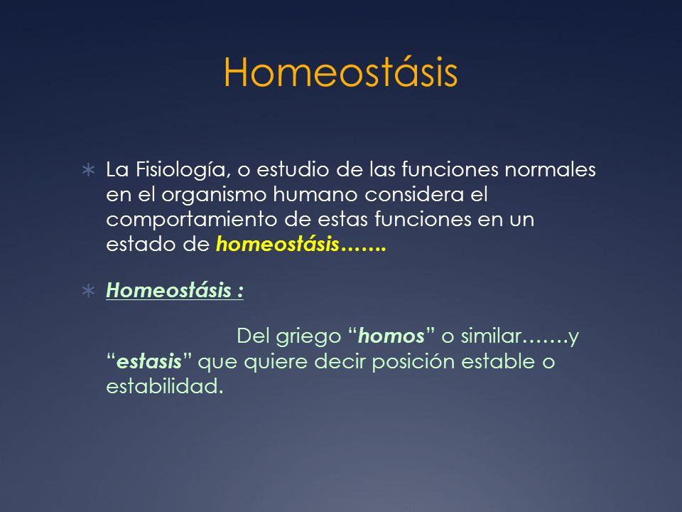 Homeostásis La Fisiología, o estudio de las funciones normales en el organismo humano considera el comportamiento de estas funciones en un estado de h